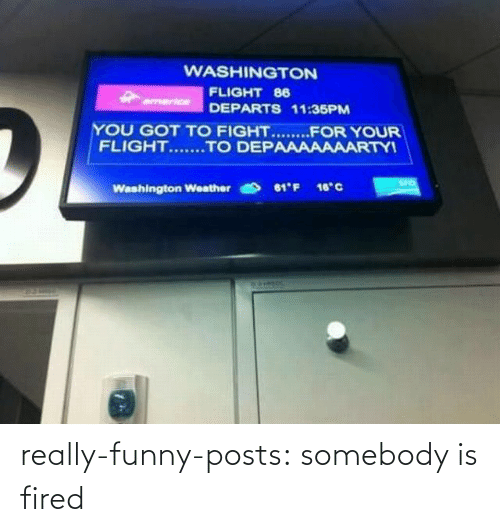 Funny, Target, and Tumblr: WASHINGTON  FLIGHT 86  armerice  DEPARTS 11:35PM  YOU GOT TO FIGHT.......FOR YOUR  FLIGHT.......TO DEPAAAAAAARTYI  SFO  61'F 16°C  Washington Weather really-funny-posts: somebody is fired