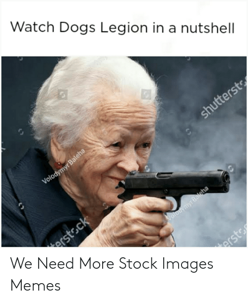 Watch Dogs Legion In A Nutshell Volodymyr Baleha Shutterst Erstsck Volodymyr Baleha Erst We Need More Stock Images Memes Dogs Meme On Awwmemes Com