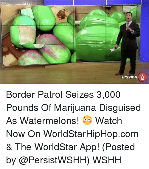 The Worldstar: WATCH NOW ON Border Patrol Seizes 3,000 Pounds Of Marijuana Disguised As Watermelons! 😳 Watch Now On WorldStarHipHop.com & The WorldStar App! (Posted by @PersistWSHH) WSHH