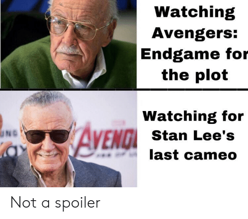 cameo: Watching  Avengers:  Endgame for  the plot  Watching for  AVEND  ENGI Stan Lee's  last cameo  UNG Not a spoiler