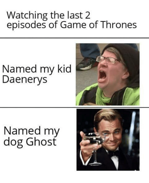 of game of thrones: Watching the last 2  episodes of Game of Thrones  Named my kid  Daenerys  Named my  dog Ghosť