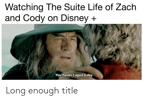 zach and cody: Watching The Suite Life of Zach  and Cody on Disney  You haven't aged a day. Long enough title