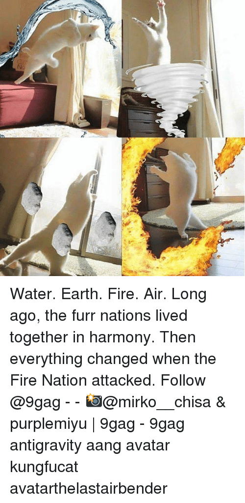 9gag, Fire, and Memes: Water. Earth. Fire. Air. Long ago, the furr nations lived together in harmony. Then everything changed when the Fire Nation attacked. Follow @9gag - - 📸@mirko__chisa & purplemiyu   9gag - 9gag antigravity aang avatar kungfucat avatarthelastairbender