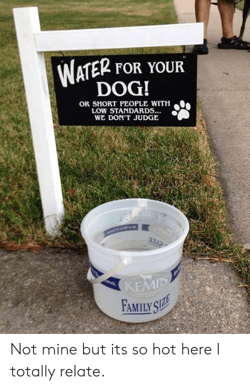 Family, Water, and Dog: WATER FOR YOUR  DOG!  OR SHORT PEOPLE WITH  LOW STANDARDS...  WE DON'T JUDGE  KEMPS  FAMILY SZE  ANNS Not mine but its so hot here I totally relate.