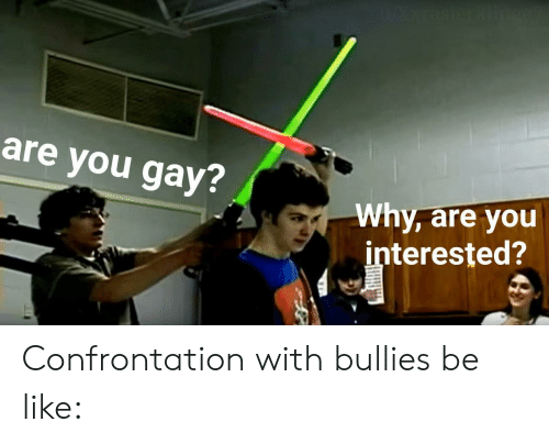 Bullies: WAxrasierklin  are you gay?  Why, are you  interested? Confrontation with bullies be like: