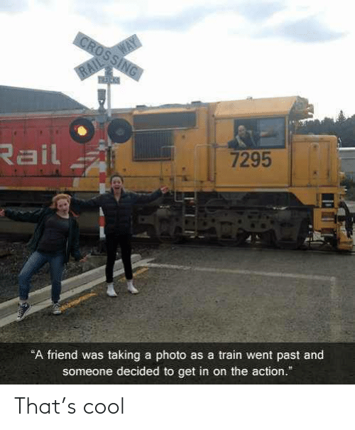"Train: WAY  CROSSING  RAIL  Rail  7295  ""A friend was taking a photo as a train went past and  someone decided to get in on the action."" That's cool"
