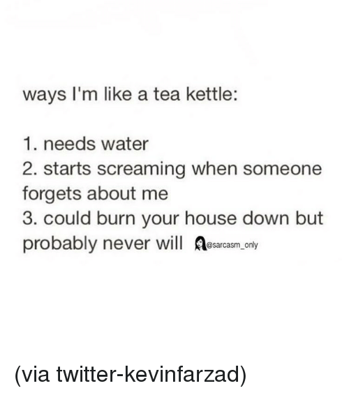 Funny, Memes, and Twitter: ways I'm like a tea kettle:  1. needs water  2. starts screaming when someone  forgets about me  3. could burn your house down but  probably never will esarasm ony (via twitter-kevinfarzad)