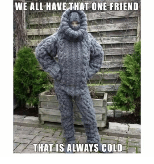 We All Have That One Friend: WE ALL HAVE THAT ONE FRIEND  THAT IS ALWAYS COLD