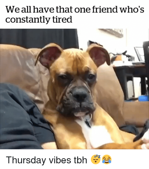We All Have That One Friend: We all have that one friend who's  constantly tired Thursday vibes tbh 😴😂