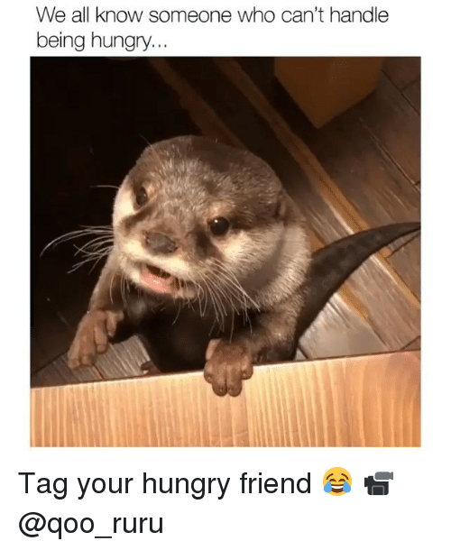 Hungry, Memes, and 🤖: We all know someone who can't handle  being hungry. Tag your hungry friend 😂 📹 @qoo_ruru