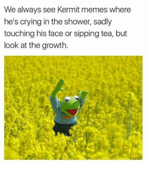 Crying, Memes, and Shower: We always see Kermit memes where  he's crying in the shower, sadly  touching his face or sipping tea, but  look at the growth