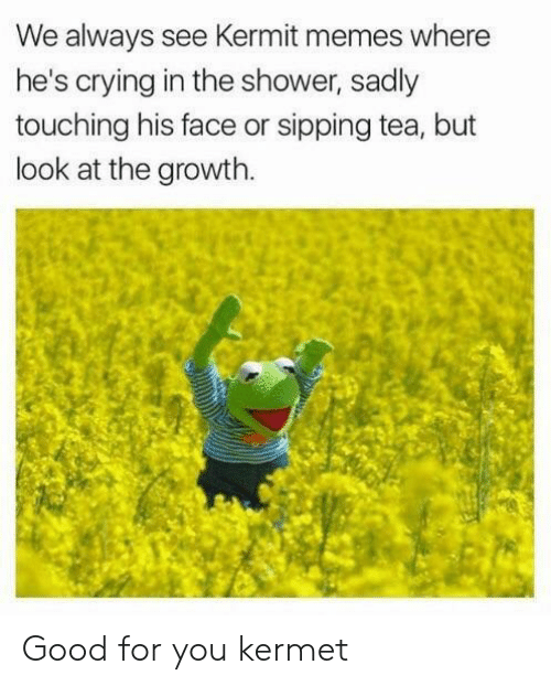 Crying, Good for You, and Memes: We always see Kermit memes where  he's crying in the shower, sadly  touching his face or sipping tea, but  look at the growth. Good for you kermet