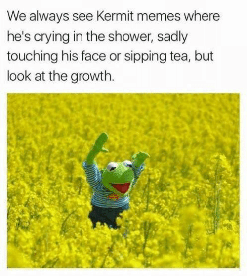 kermit: We always see Kermit memes where  he's crying in the shower, sadly  touching his face or sipping tea, but  look at the growth.