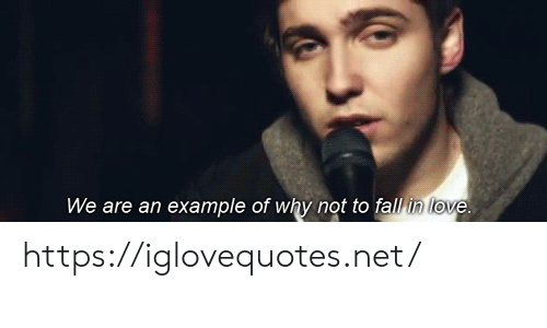 Example Of: We are an example of why not to fall in love. https://iglovequotes.net/