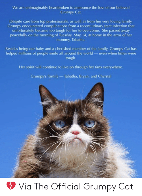 Official Grumpy: We are unimaginably heartbroken to announce the loss of our beloved  Grumpy Cat.  Despite care from top professionals, as well as from her very loving family  Grumpy encountered complications from a recent urinary tract infection that  unfortunately became too tough for her to overcome. She passed away  peacetuly on the morming on Tomendy May 4 at home in the arms of her  mommy, Tabatha.  Besides being our baby and a cherished member of the family, Grumpy Cat has  helped millions of people smile all around the world- even when times were  tough.  Her spirit will continue to live on through her fans everywhere.  Grumpy's Family  Tabatha, Bryan, and Chyrstal 💔 Via The Official Grumpy Cat