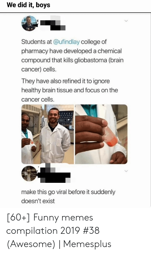 College, Funny, and Memes: We did it, boys  Students at @ufind lay college of  pharmacy have developed a chemical  compound that kills gliobastoma (brain  cancer) cells.  They have also refined it to ignore  healthy brain tissue and focus on the  cancer cells  make this go viral before it suddenly  doesn't exist [60+] Funny memes compilation 2019 #38 (Awesome) | Memesplus