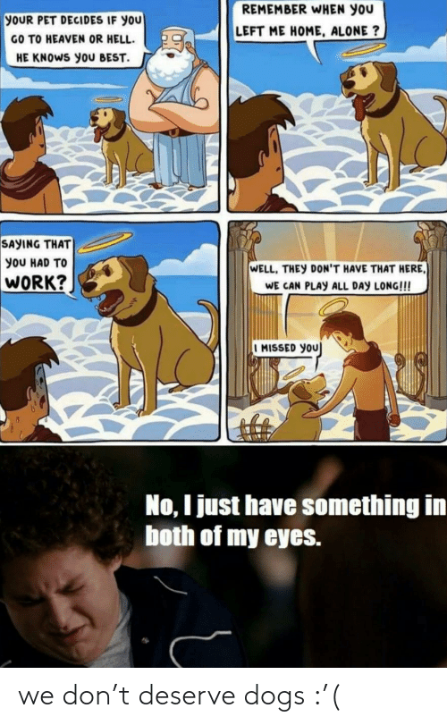 We Don: we don't deserve dogs :'(