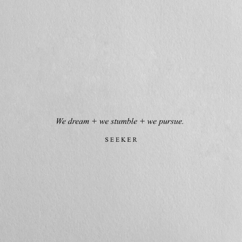 Dream, Seeker, and Pursue: We dream  we stumble + we pursue.  SEEKER