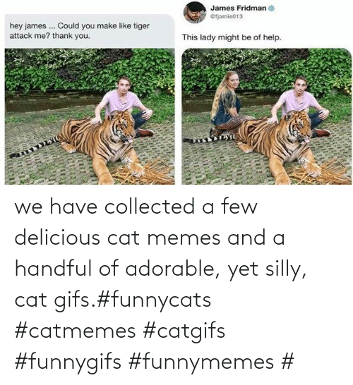 yet: we have collected a few delicious cat memes and a handful of adorable, yet silly, cat gifs.#funnycats #catmemes #catgifs #funnygifs #funnymemes #