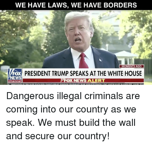 News, White House, and House: WE HAVE LAWS, WE HAVE BORDERS  PRESIDENT TRUMP SPEAKS AT THE WHITE HOUSE  NEWS  OX NEWS ALERT  channel Dangerous illegal criminals are coming into our country as we speak. We must build the wall and secure our country!