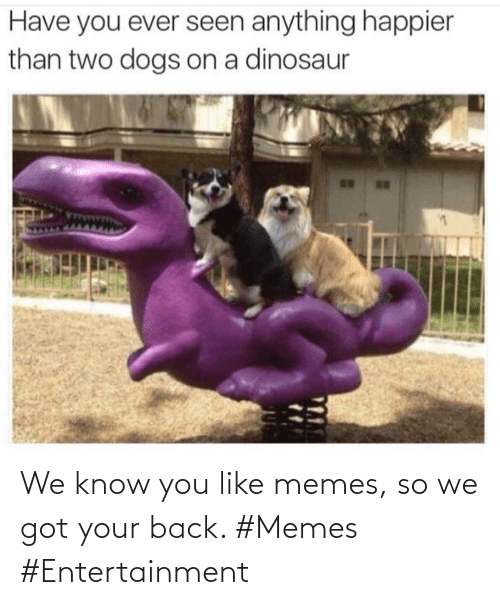 entertainment: We know you like memes, so we got your back. #Memes #Entertainment