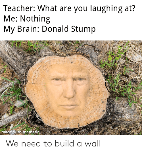 build a: We need to build a wall