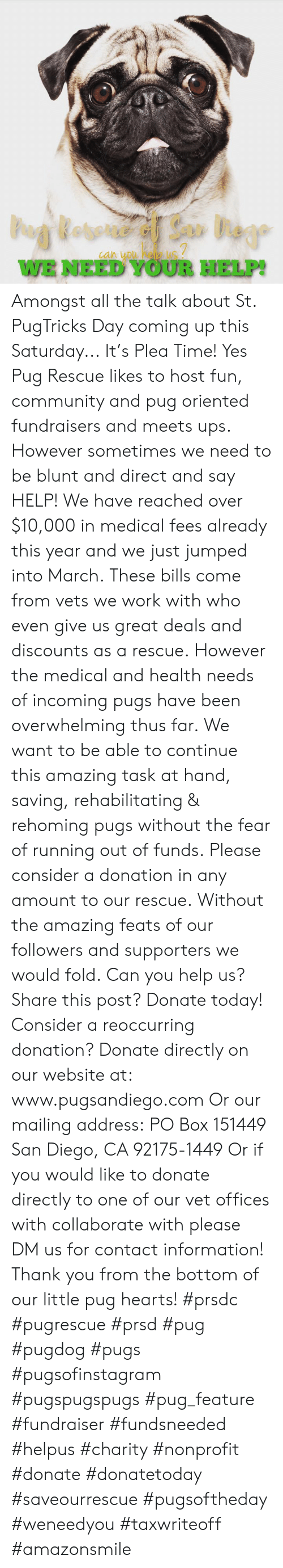 Community, Memes, and Ups: WE NEED YOUR HELP! Amongst all the talk about St. PugTricks Day coming up this Saturday...  It's Plea Time! Yes Pug Rescue likes to host fun, community and pug oriented fundraisers and meets ups.   However sometimes we need to be blunt and direct and say HELP!   We have reached over $10,000 in medical fees already this year and we just jumped into March.  These bills come from vets we work with who even give us great deals and discounts as a rescue.  However the medical and health needs of incoming pugs have been overwhelming thus far.  We want to be able to continue this amazing task at hand, saving, rehabilitating & rehoming pugs without the fear of running out of funds.  Please consider a donation in any amount to our rescue.  Without the amazing feats of our followers and supporters we would fold.  Can you help us? Share this post? Donate today! Consider a reoccurring donation?   Donate directly on our website at: www.pugsandiego.com  Or our mailing address: PO Box 151449 San Diego, CA 92175-1449  Or if you would like to donate directly to one of our vet offices with collaborate with please DM us for contact information!  Thank you from the bottom of our little pug hearts!  #prsdc #pugrescue #prsd #pug #pugdog #pugs #pugsofinstagram #pugspugspugs #pug_feature #fundraiser #fundsneeded #helpus #charity #nonprofit #donate #donatetoday #saveourrescue #pugsoftheday #weneedyou #taxwriteoff #amazonsmile