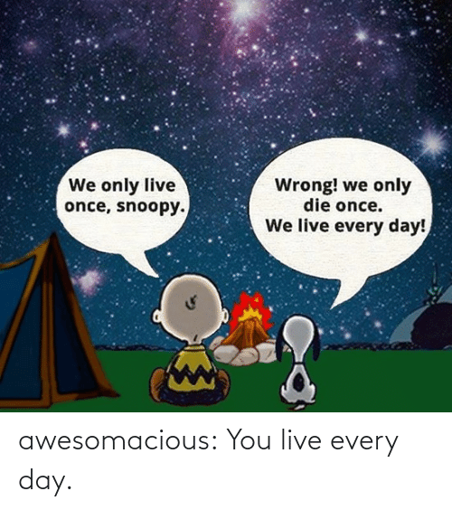 We Only: We only live  once, snoopy.  Wrong! we only  die once.  We live every day! awesomacious:  You live every day.