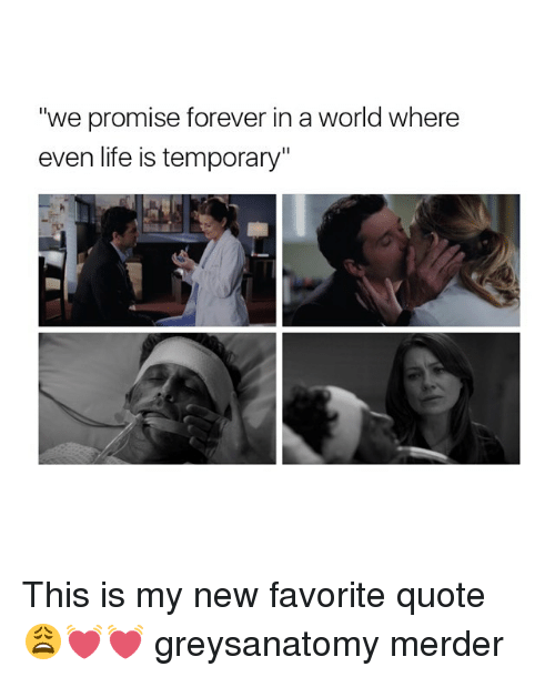 """foreverly: """"we promise forever in a world where  even life is temporary"""" This is my new favorite quote 😩💓💓 greysanatomy merder"""