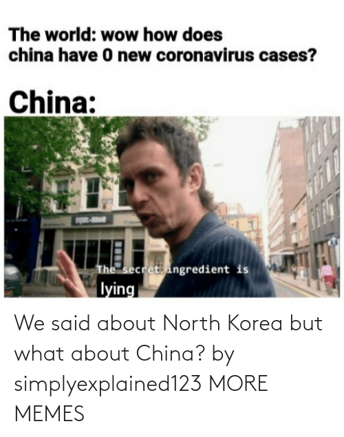 Dank, Memes, and North Korea: We said about North Korea but what about China? by simplyexplained123 MORE MEMES