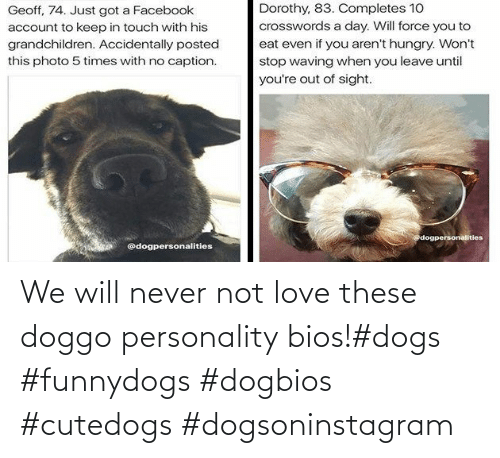 We Will: We will never not love these doggo personality bios!#dogs #funnydogs #dogbios #cutedogs #dogsoninstagram