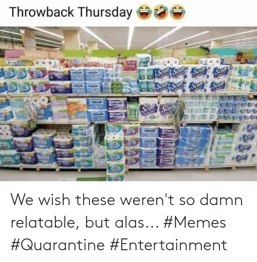 Wish: We wish these weren't so damn relatable, but alas... #Memes #Quarantine #Entertainment