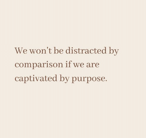 purpose: We won't be distracted by  comparison if we are  captivated by purpose.