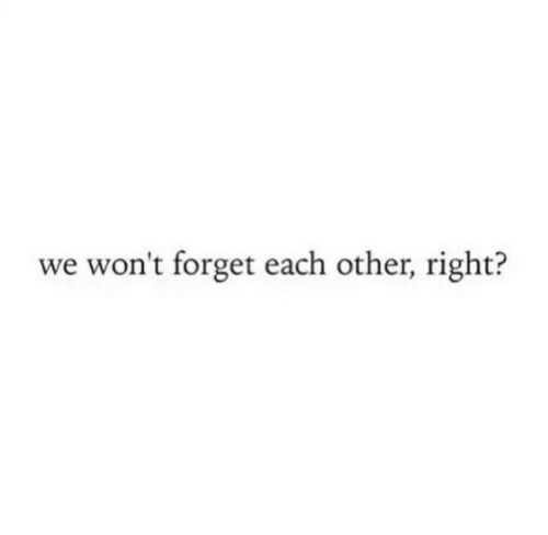 Right, Each Other, and Forget: we won't forget each other, right?