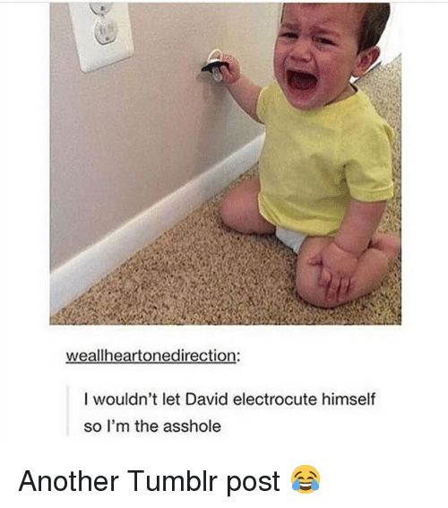Memes, Tumblr, and Asshole: weallheartonedirection:  I wouldn't let David electrocute himself  so I'm the asshole Another Tumblr post 😂