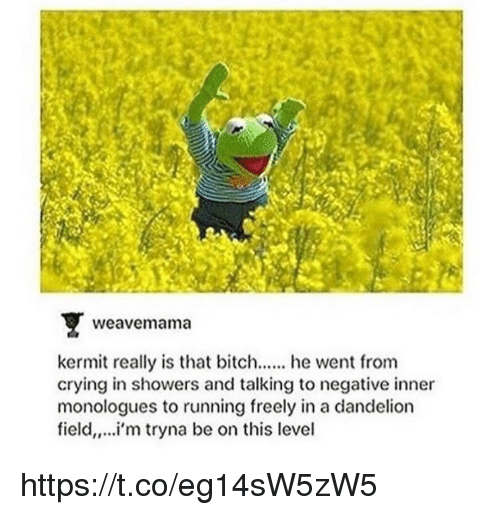 Crying, Memes, and Running: weavemam  kermit really is that biche went from  crying in showers and talking to negative inner  monologues to running freely in a dandelion  field,,..i'm tryna be on this level https://t.co/eg14sW5zW5