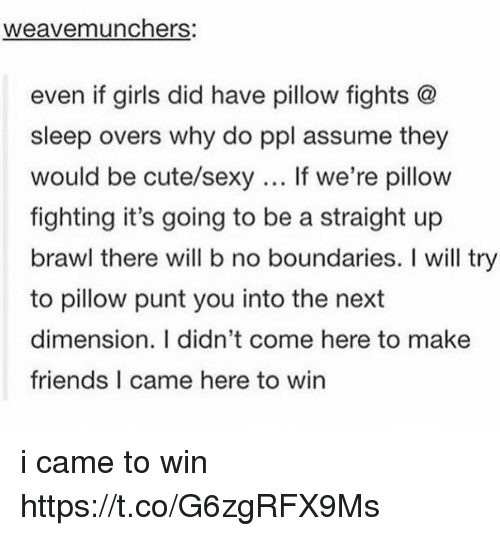 Sexyness: weavemunchers:  even if girls did have pillow fights @  sleep overs why do ppl assume they  would be cute/sexy If we're pillow  fighting it's going to be a straight up  brawl there will b no boundaries. I will try  to pillow punt you into the next  dimension. I didn't come here to make  friends I came here to win i came to win https://t.co/G6zgRFX9Ms