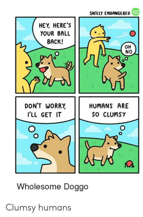 Wholesome, Back, and Doggo: WEB  SAFELY ENDANCERED  HEY, HERE'S  YOUR BALL  BACK!  OH  NO  DON'T WORRY  HUMANS ARE  SO CLUMSY  ILL GET IT  Wholesome Doggo Clumsy humans