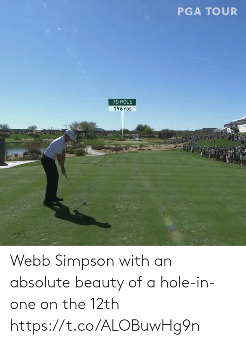 Webb: Webb Simpson with an absolute beauty of a hole-in-one on the 12th https://t.co/ALOBuwHg9n