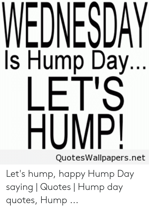 WEDNESDAY Is Hump Day LET\'S HUMP! QuotesWallpapersnet Let\'s ...
