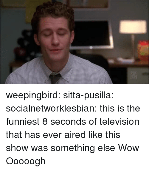 Target, Tumblr, and Wow: weepingbird: sitta-pusilla:  socialnetworklesbian: this is the funniest 8 seconds of television that has ever aired like this show was something else  Wow   Ooooogh