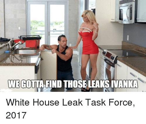 White House, House, and White: WEGOTTA FIND THOSE LEAKS INANKA White House Leak Task Force, 2017