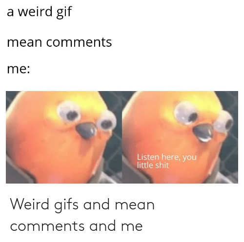 And: Weird gifs and mean comments and me