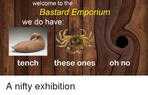 exhibition: welcome to the  Bastard mponum  we do have  tench these ones oh no A nifty exhibition