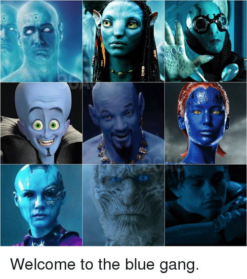 Dank, Gang, and Blue: Welcome to the blue gang.