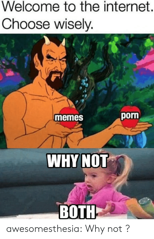 Wisely: Welcome to the internet.  Choose wisely.  porn  memes  WHYNOT  BOTH awesomesthesia:  Why not ?