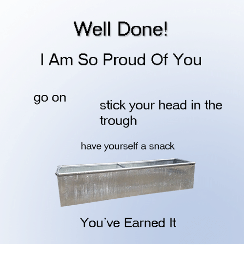 Dank, Earned It, and Head: Well Done!  I Am So Proud Of You  go on  stick your head in the  trough  have yourself a snack  You've Earned It