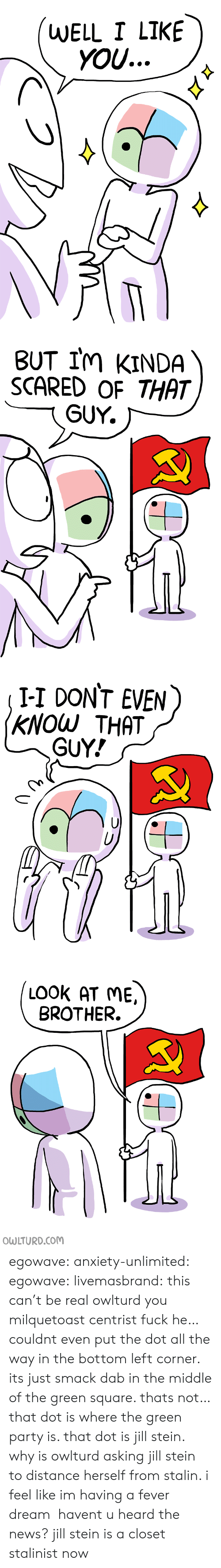 News, Party, and Tumblr: WELL I LIKE  yOU...   BUT IM kINDA  SCARED OF THAT  GUY.   I-I DONT EVEN  KNOW THAT  GUY!   LOOK AT ME  BROTHER. egowave: anxiety-unlimited:   egowave:  livemasbrand:  this can't be real  owlturd you milquetoast centrist fuck    he… couldnt even put the dot all the way in the bottom left corner. its just smack dab in the middle of the green square. thats not… that dot is where the green party is. that dot is jill stein. why is owlturd asking jill stein to distance herself from stalin. i feel like im having a fever dream    havent u heard the news? jill stein is a closet stalinist now
