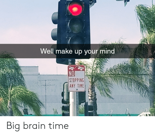 Brain, Time, and Mind: Well make up your mind  NO  STOPPING  ANY TIME Big brain time