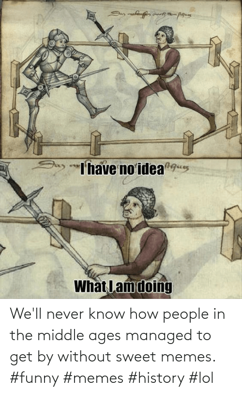 The Middle: We'll never know how people in the middle ages managed to get by without sweet memes. #funny #memes #history #lol